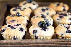 De muffin cupcakes met bosbessen op een houten dienblad Cupcakes verfraaide met bessen Horizontale foto Stock Foto's