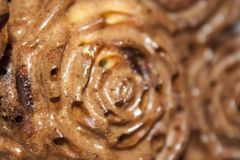 De muffin van de close-upchocolade in de vorm van bloemen stock afbeelding