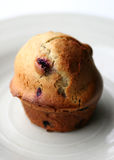 De muffin van de bosbes Royalty-vrije Stock Fotografie