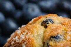 De Muffin van de bosbes Stock Afbeelding