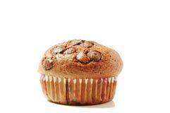 De muffin van de chocolade Stock Fotografie