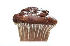 De Muffin van de chocolade Royalty-vrije Stock Foto's