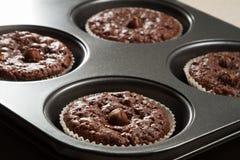 De muffin van de chocolade in bakseldienblad stock afbeeldingen