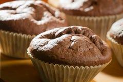 De muffin van de chocolade in cupcake Royalty-vrije Stock Fotografie
