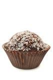 De Muffin van de chocolade met de Spaanders van de Kokosnoot Stock Afbeeldingen