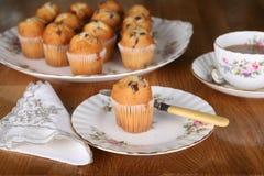 De Muffin van de chocolade voor thee stock afbeeldingen