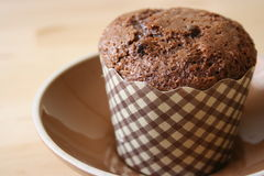 De Muffin van de Chocoladeschilfer Stock Afbeeldingen