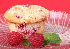 De Muffin van de framboos Stock Fotografie