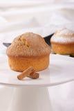 De muffin van de kaneel Stock Afbeeldingen