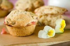 De muffin van de rabarber en van de pistache Royalty-vrije Stock Afbeeldingen