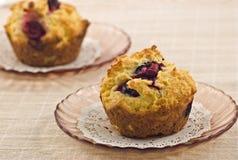 De muffins van de Amerikaanse veenbes Royalty-vrije Stock Afbeelding