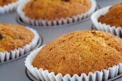 De Muffins van de banaan in het Dienblad van het Baksel Stock Fotografie