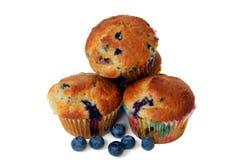De Muffins van de bosbes die op Wit worden geïsoleerdk Royalty-vrije Stock Foto's
