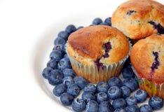 De Muffins van de bosbes op Wit Royalty-vrije Stock Fotografie