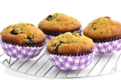 De muffins van de bosbessenbanaan Stock Fotografie