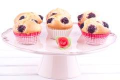 De muffins van de braambes stock foto's