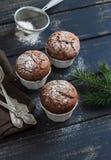 De muffins van de chocolade Royalty-vrije Stock Afbeelding
