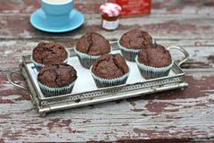 De muffins van de chocolade Stock Foto's
