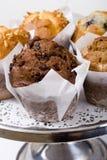 De muffins van de koffie Royalty-vrije Stock Afbeeldingen