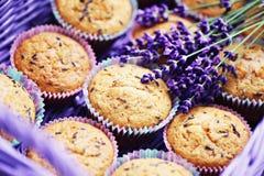 De muffins van de lavendel Stock Foto