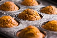 De muffins van de pompoen Royalty-vrije Stock Foto