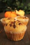 De muffins van de pompoen Royalty-vrije Stock Foto's