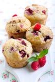 De muffins van frambozenzemelen Royalty-vrije Stock Afbeelding