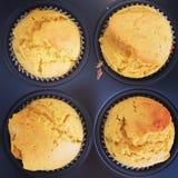 De muffins van het pompoenkruid stock fotografie
