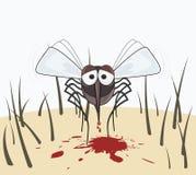 De mug drinkt het bloed van de menselijke huid Royalty-vrije Stock Fotografie