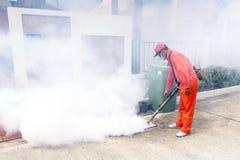 De mug is a van malaria en knokkelkoortskoorts stock afbeeldingen