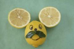 De muisgezicht van de citroen met snor Royalty-vrije Stock Foto's