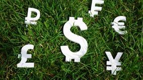 De munt van de dollaruitwisseling op een grasachtergrond Stock Afbeeldingen