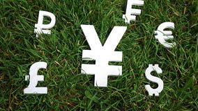 De munt van de Yenuitwisseling op een grasachtergrond Stock Fotografie