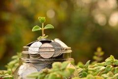 De muntstukken brengen glas en stapel muntstukken voor zaken en belastingsseizoen aan Stock Foto