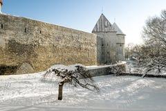 De muren en de torens van oude stad Tallinn in de winter Stock Foto's