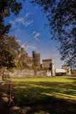 In de muren van het kasteel Stock Fotografie