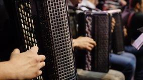 De musicus die de harmonika spelen Close-up, musici die de harmonika spelen Groep musici die de harmonika spelen stock foto's