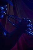 De musicus van blauw   Stock Afbeelding