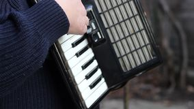 De Musicus van de pianoharmonika stock video