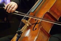 De musicus van de violoncel. Stock Foto's
