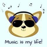 De musicus van hondcorgi, die aan muziek in blauwe hoofdtelefoons en zonnebril, in de stijl van beeldverhalen luisteren vector illustratie