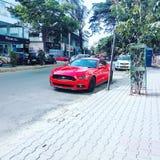 De Mustang GT van de doorwaadbare plaats stock afbeeldingen