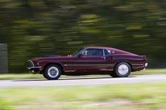 De Mustang Mach 1 van de doorwaadbare plaats Stock Afbeelding