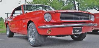 de mustang van 1965 Stock Fotografie