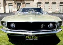 De Mustang van de doorwaadbare plaats Royalty-vrije Stock Fotografie