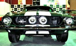 De Mustang van de doorwaadbare plaats Stock Afbeeldingen