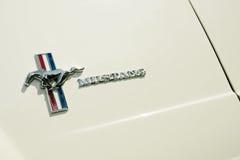De Mustang van de doorwaadbare plaats Royalty-vrije Stock Afbeelding