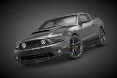 De Mustang van de doorwaadbare plaats (2010) Stock Fotografie