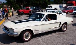 De Mustang van de doorwaadbare plaats Royalty-vrije Stock Afbeeldingen