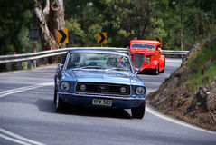 De Mustang van de doorwaadbare plaats Royalty-vrije Stock Foto